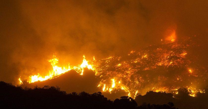 Pożar lasu pod Los Angeles, 2017 r. Fot. Scott L, CC BY-SA
