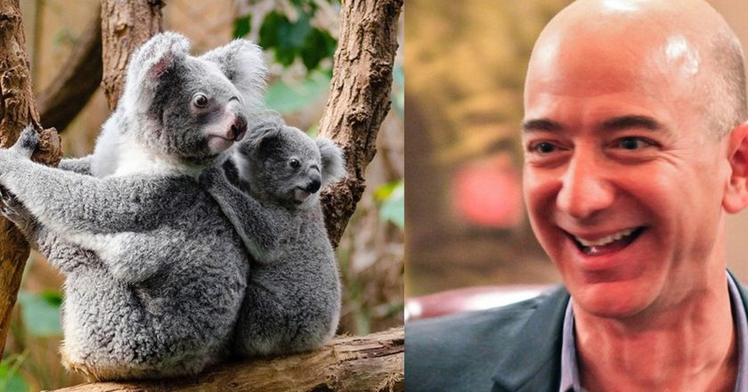 Jeff Bezos. Fot. Steve Jurvetson CC BY 2.0/Flickr.com. Fotoedycja KP