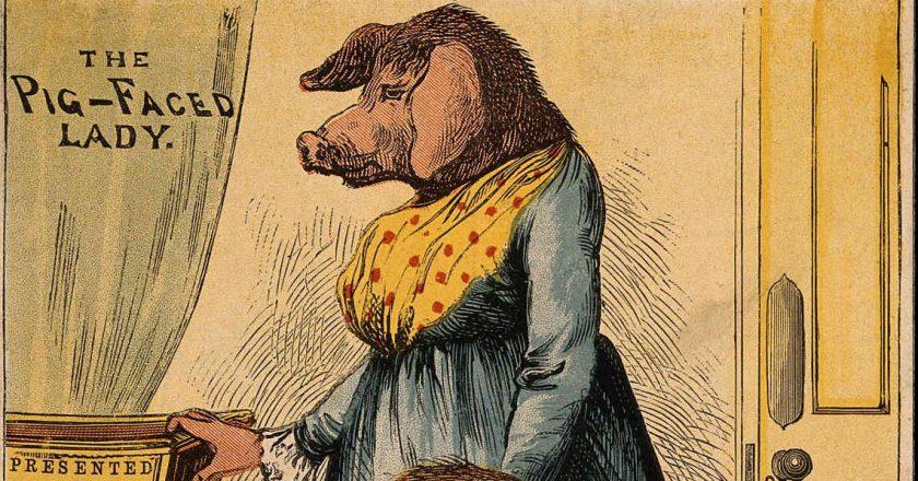 pig-head-lady