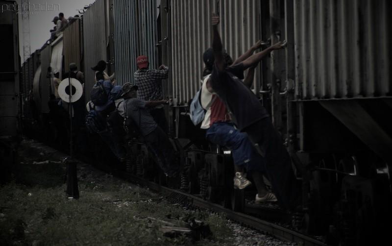 migranci-wspinaja-sie-na-bestie