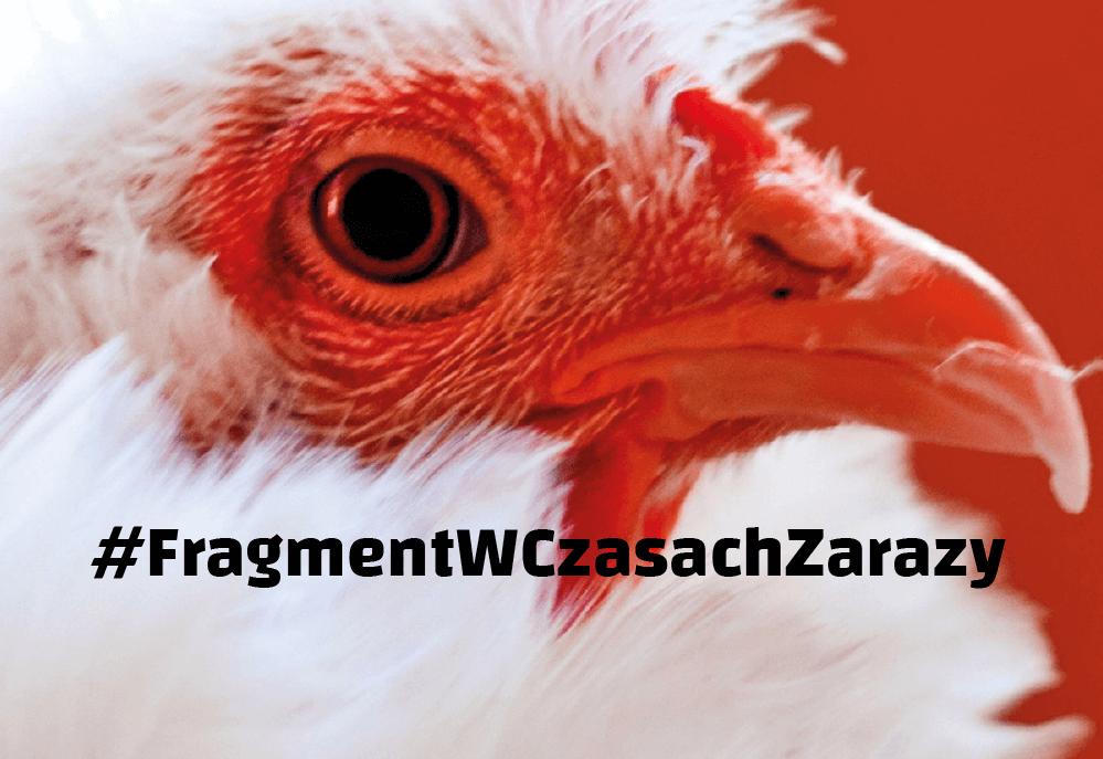 Jaś Kapela, Polskie mięso #fragmentwczasachzarazyi
